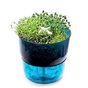 Проращиватель и выращиватель семян Doctor Green