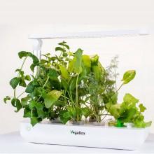 Микроферма Vegebox T-Box