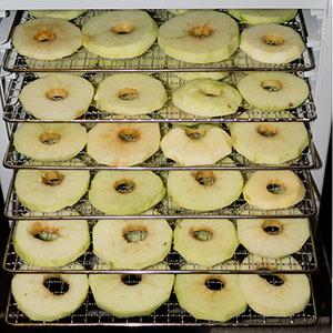 Сушилка для яблок Rawmid Dream Vitamin DDV-10