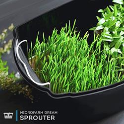 Автоматические проращиватели и микрофермы для зелени - купить в интернет-магазине Made in dream