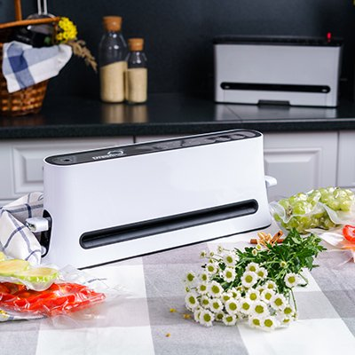 Вакуумный упаковщик для продуктов овощей фруктов мяса рыбы Rawmid Dream Modern VDM-01