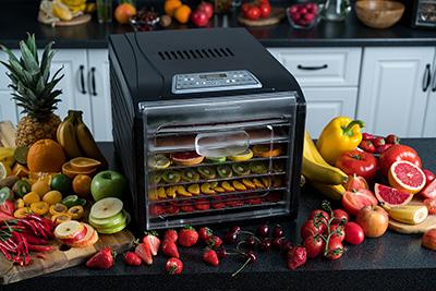 Дегидратор для фруктов ягод и овощей Rawmid Dream Vitamin DDV-07