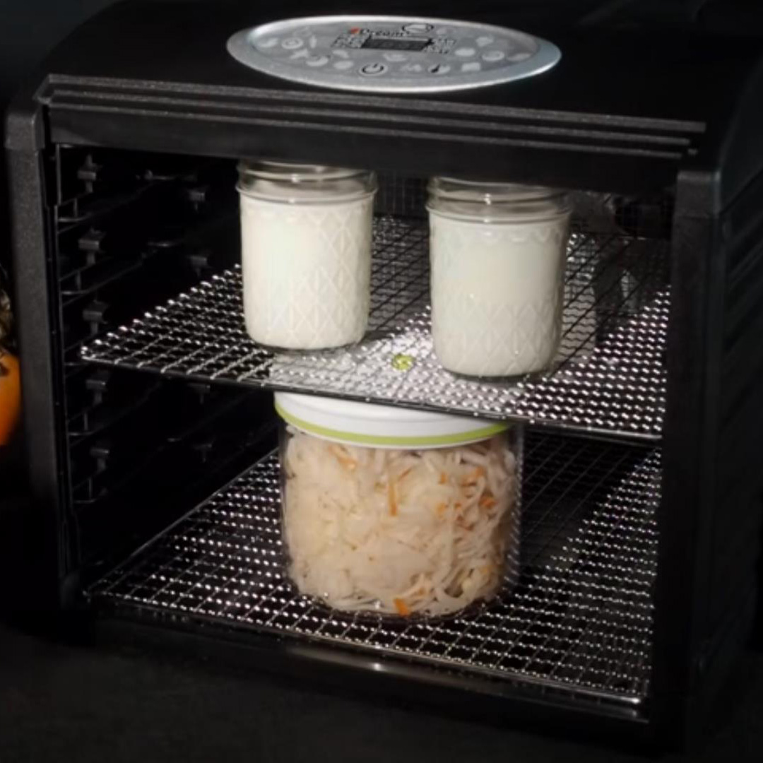 Йогурт или банки в сушилке домашней Dream Vitamin DDV-07