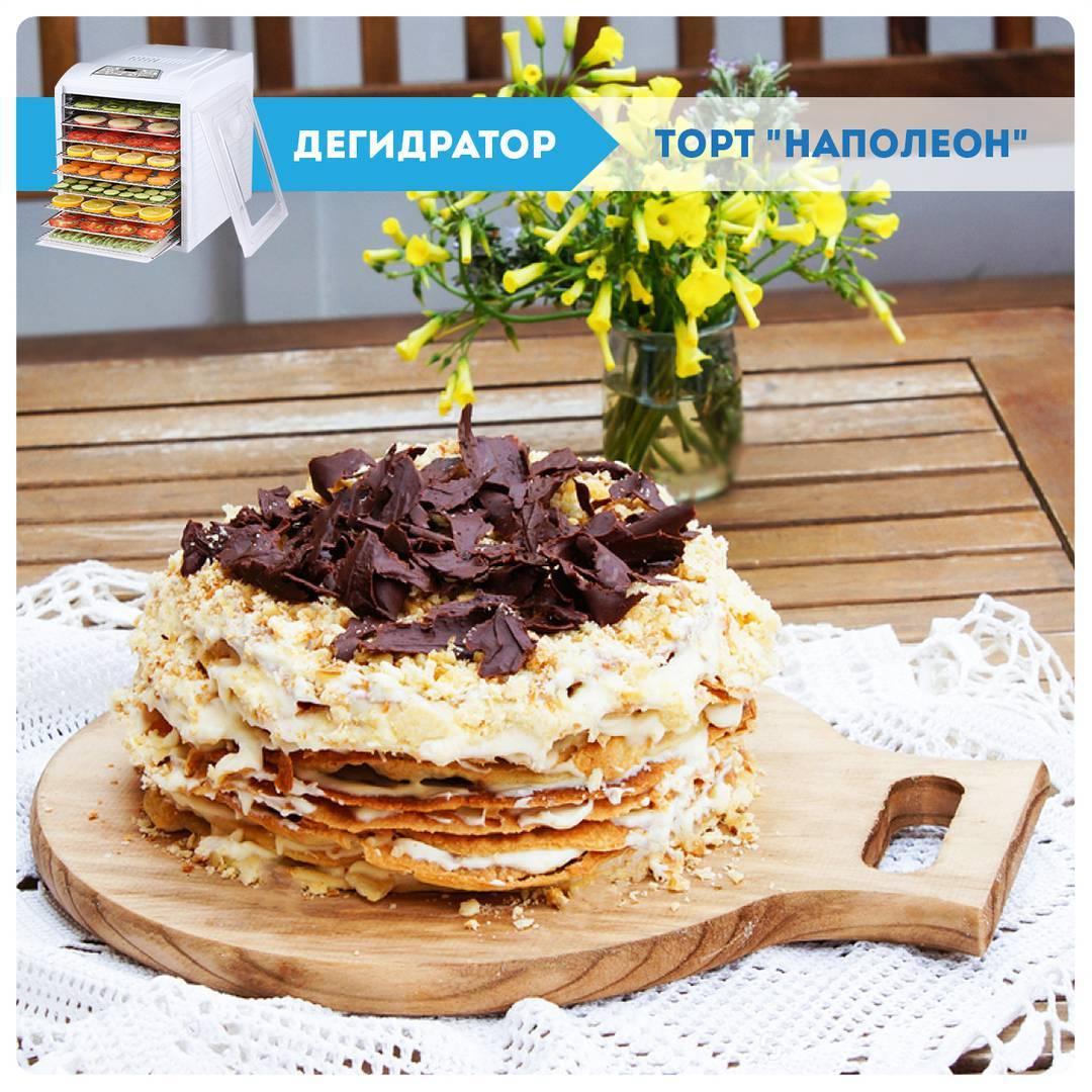Коржи для торта в дегидраторе Dream Vitamin DDV-07 купить сушилку домашнюю