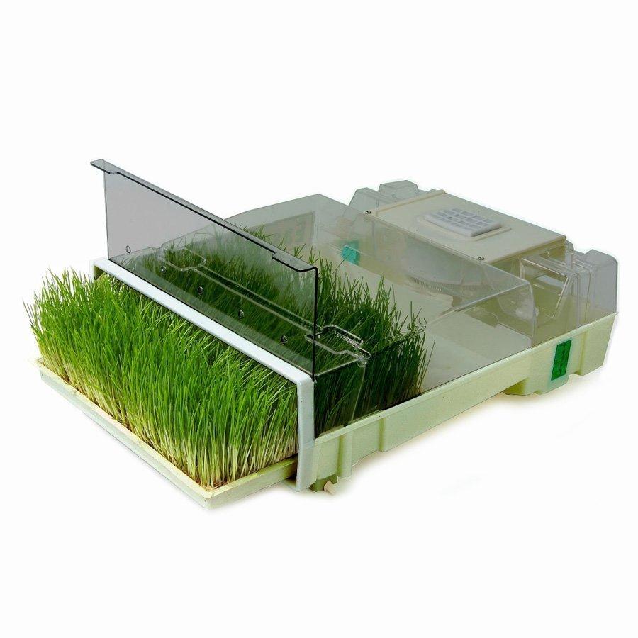 Купить проращиватель и микроферму