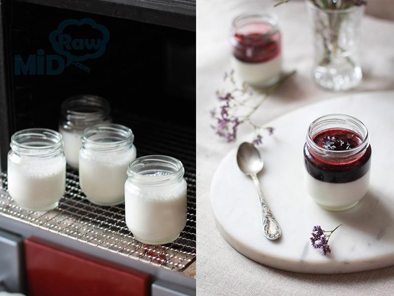 Йогурт в дегидраторе ферментация йогурта в электросушилке
