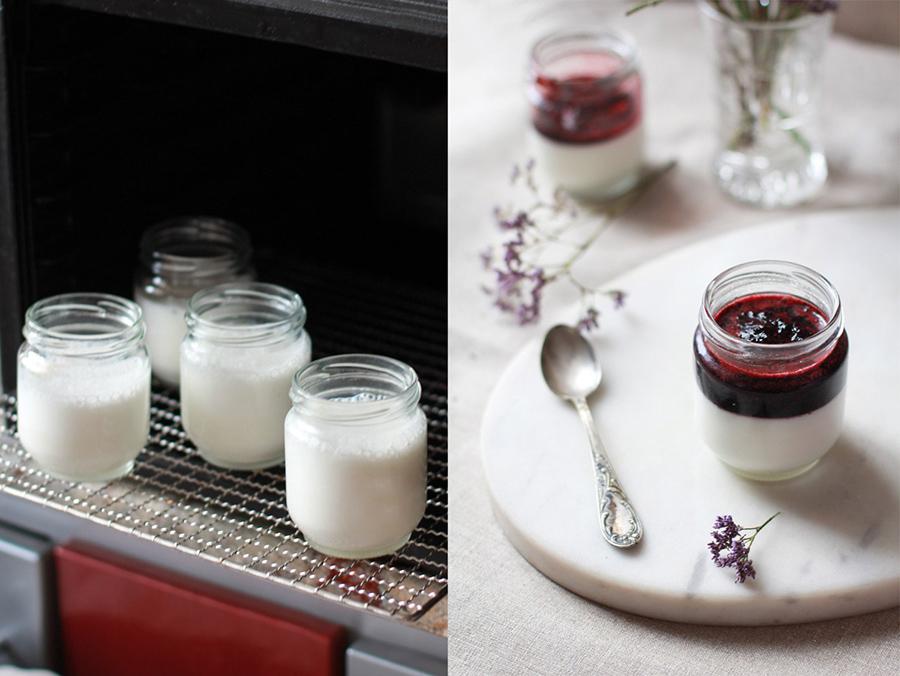 Йогурт в дегидраторе - как приготовить йогурт дома